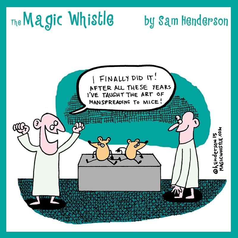 the magic whistle by sam henderson wow cool
